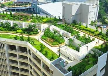 Озеленення даху