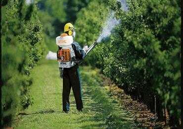 Лікування дерев