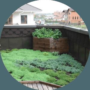 Озеленення даху Львів