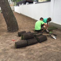 Укладка рулонного газону Брюховичі10