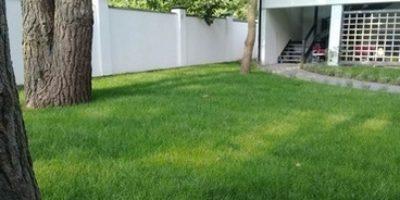 Укладка газону Брюховичі