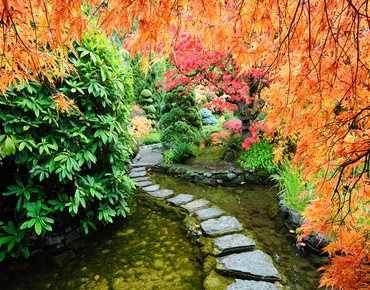 Догляд за садом восени