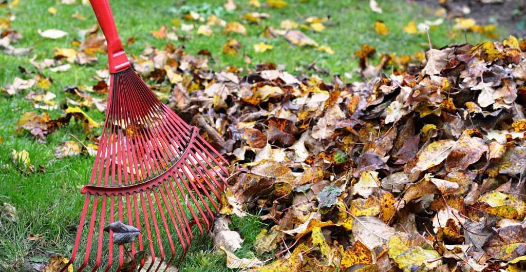 Прибирання листя в саду